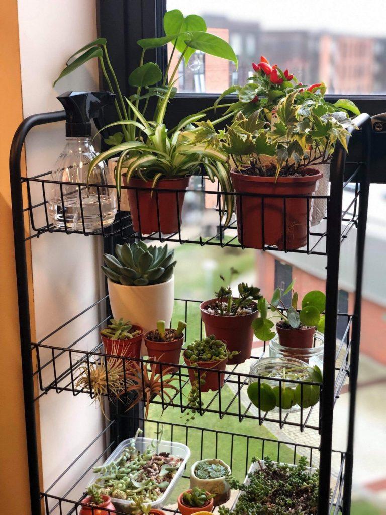 Movable Indoor Garden