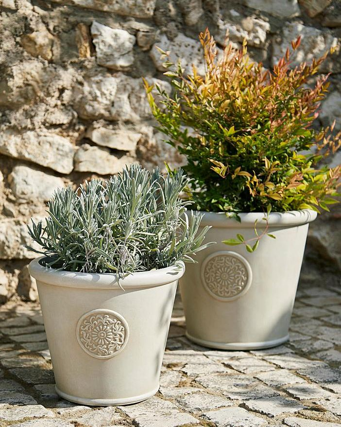 New Pots or Containers