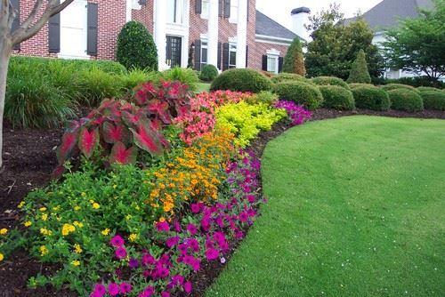 Patterned Flower Hedges