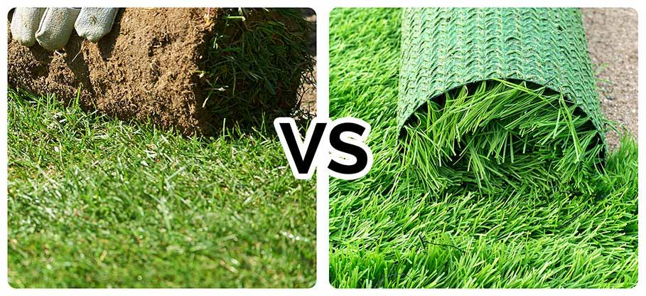 Real Grass vs Artificial Turf!