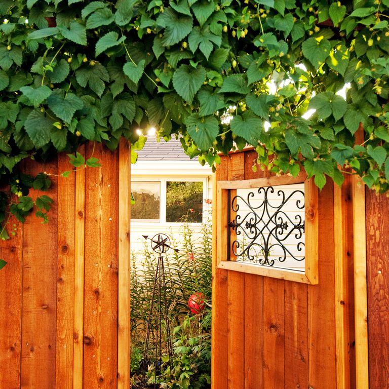 Secret Garden fence