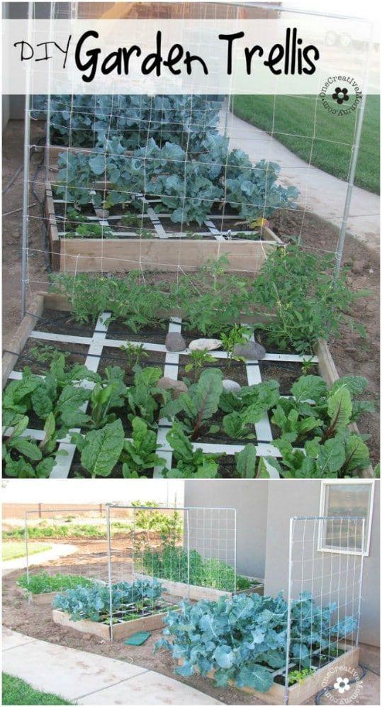 Simple DIY Squash and Melon Trellis