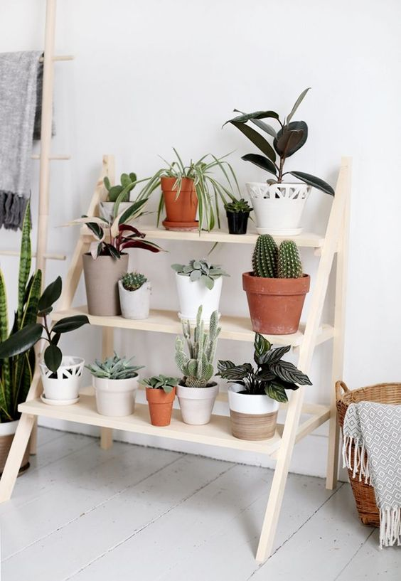 Simple Ladder Plant Stand