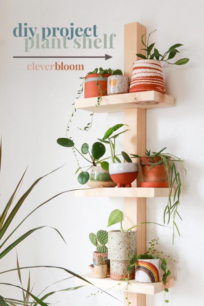 Simple Plant Shelves