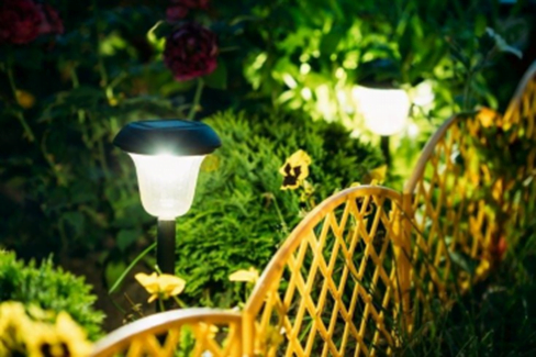 Solar Light in Garden