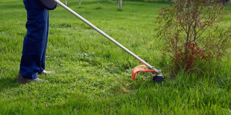 Straight vs. Curved Shaft Weed Trimmer