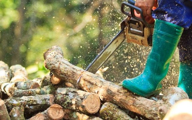 The Qualcast Chainsaw Review