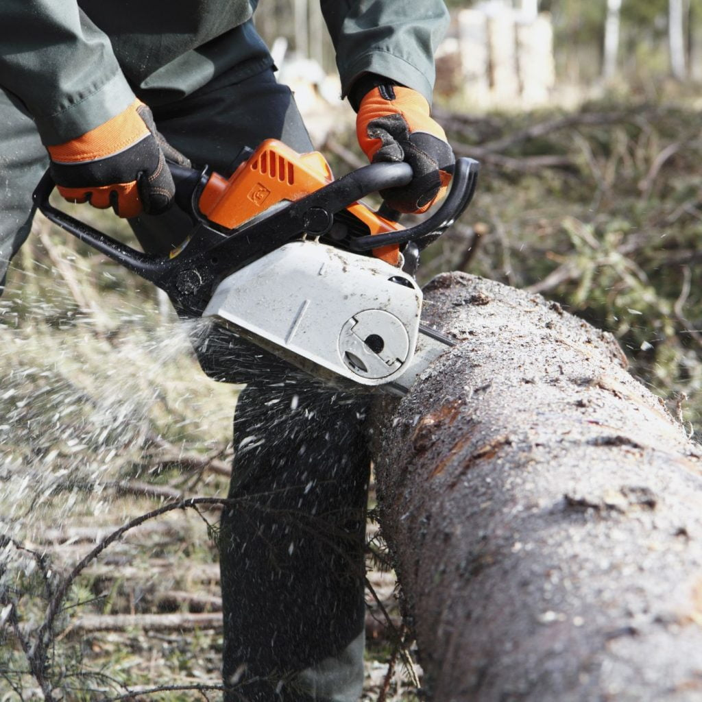 Using Chainsaw on a Log