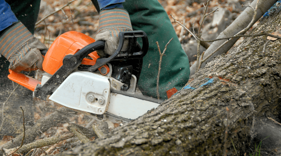 What Is A Chainsaw?