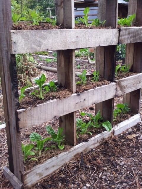 Wooden Vertical Planter