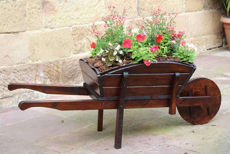 A Mahogany Wheelbarrow Planter for A Patio