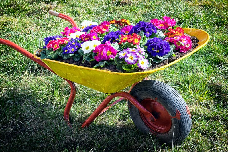 Colorful and Bright Wheelbarrow Planter