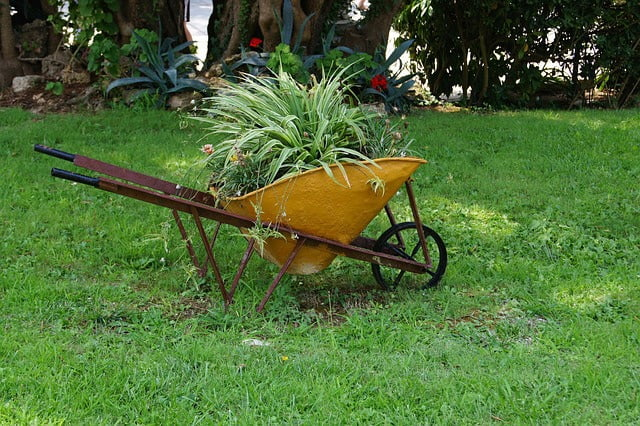 Planted Old Wheelbarrow Planter