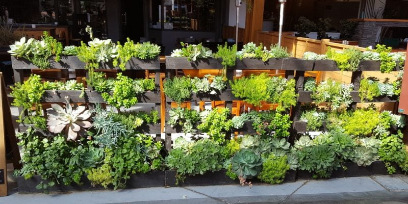 A pallet fence that integrates flower and succulent planters_Homeselfe