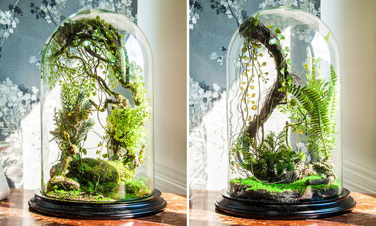 An example of glass dome terranium with gravel and plants at its base_The Green Head
