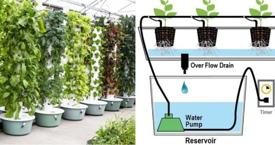 . Aeroponics Tower Garden uses less Space