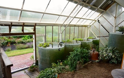 Are Cold Frame Greenhouse Warm at Night