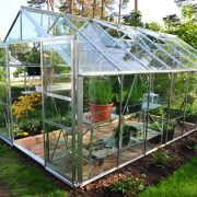 Can I Grow Anything in My Greenhouse During Winter