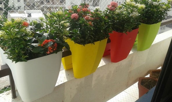 Fence Top Planter Buckets