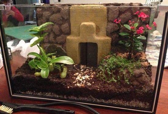 Garden Terrarium Idea