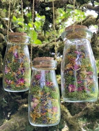 Secret Jar Hanging Terrarium