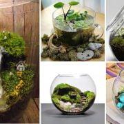 Small Terrarium Ideas