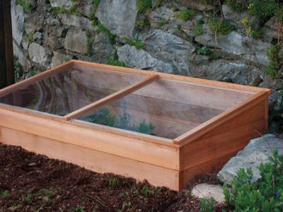 What Is a Coldframe Green House