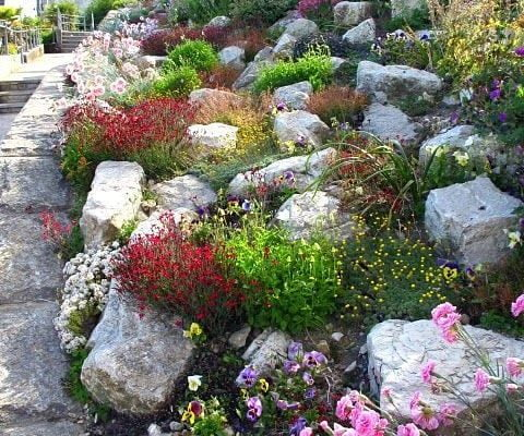 What Kind of Rock To Use On Hillside Landscaping