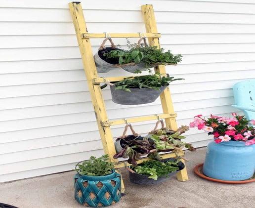 DIY Old Ladder Vertical Garden