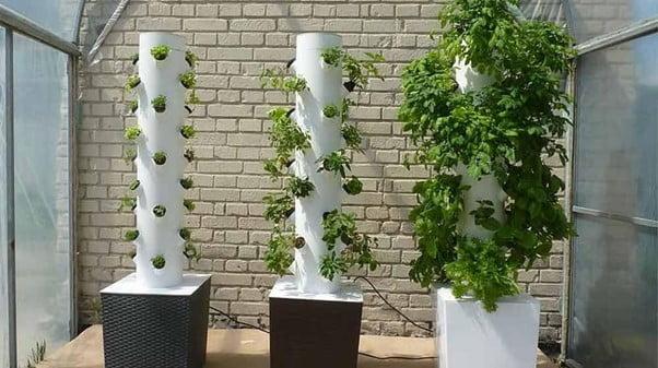 DIY Tower Garden