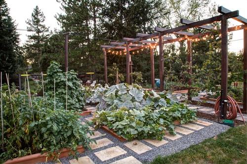 Edible Landscaping (Vegetable Garden)