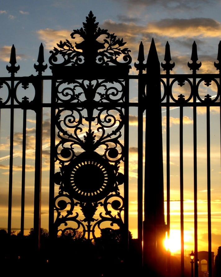 First, Let Us See What the Different Types of Fence Gates Are