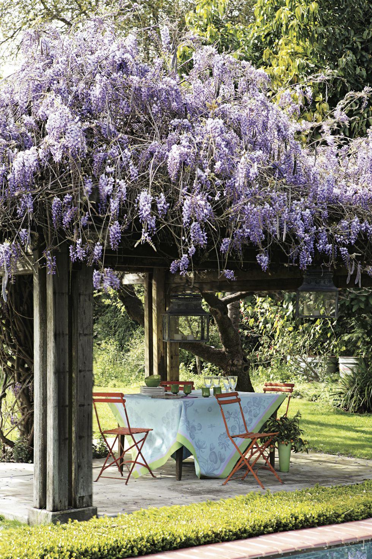 Flower Covered Pergola