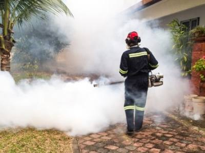 How Mosquito Foggers Work A Basic Overview