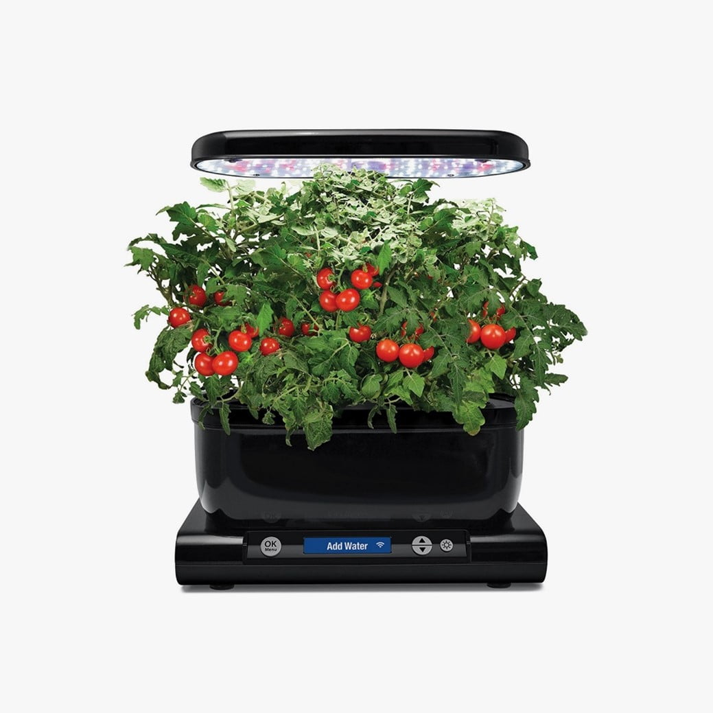 How Safe is Growing Plants in an Aero Garden
