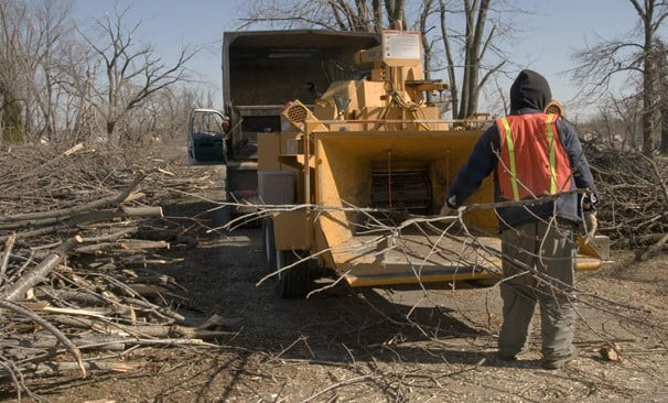 Important Pointers for Selecting a Woodchipper