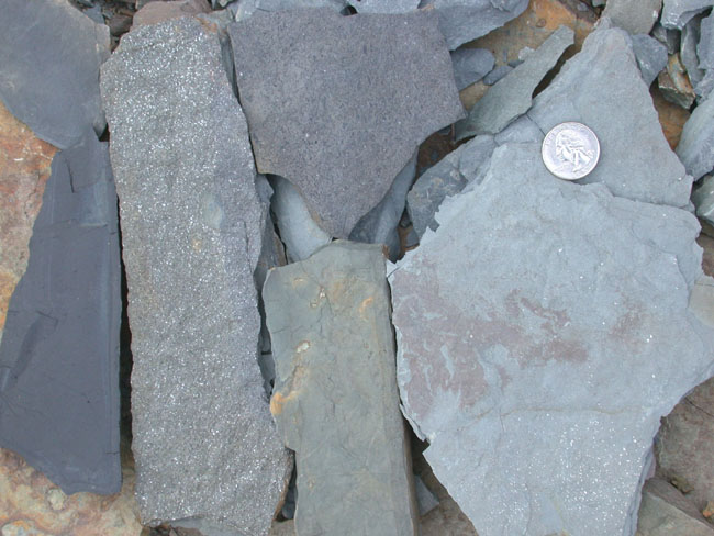 Mudstone or Shale