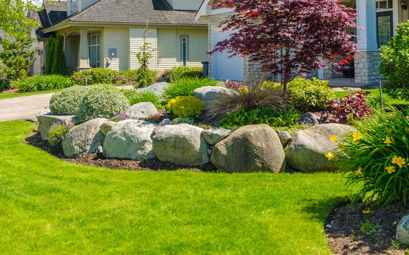 Rock Garden of Tranquility