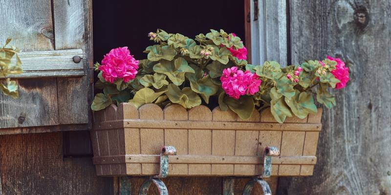 8 Best Hanging Planter Boxes You Can Buy