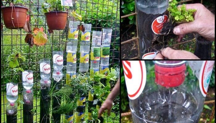 Bottle Tower Garden