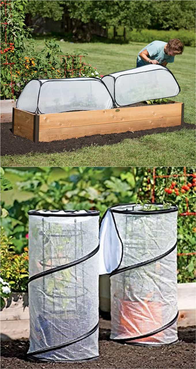 Collapsible Small Greenhouse