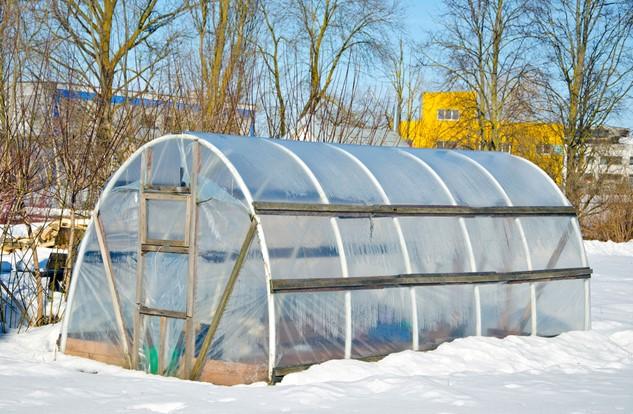 Greenhouse Winter Garden