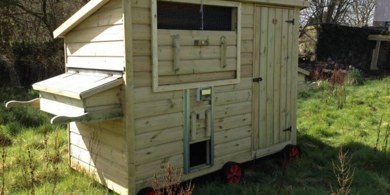 How Big Should a Chicken Coop Door Be