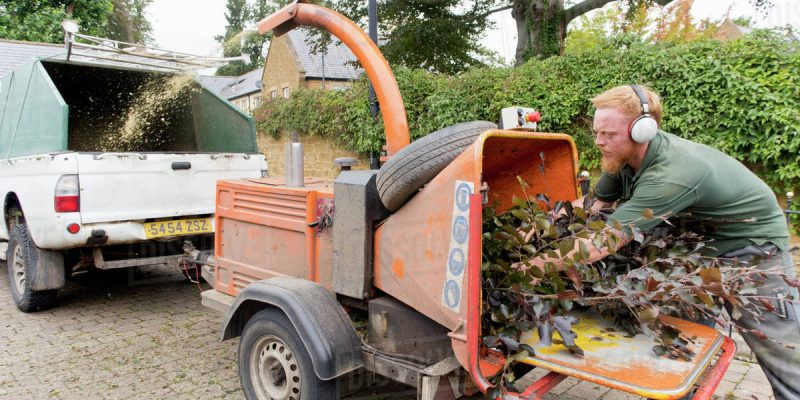 Rent a Woodchipper A Guide for Tree Removal