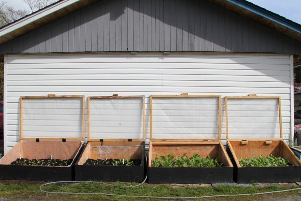 Try To Locate the Cold Frame Under the Roof