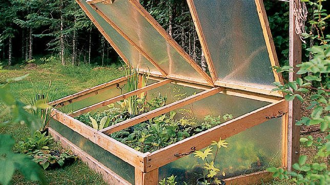 diy greenhouse and cold frames