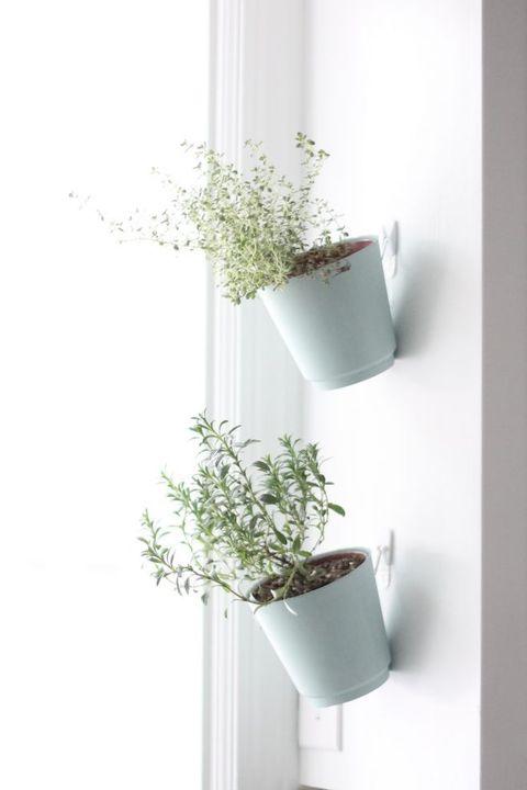 DIY Single Vertical Planter