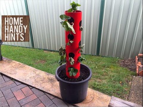 DIY Strawberry Tower