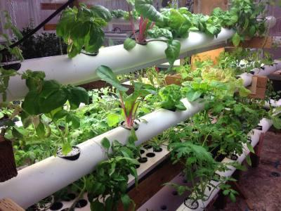 DIY Tower Garden PVC Ideas