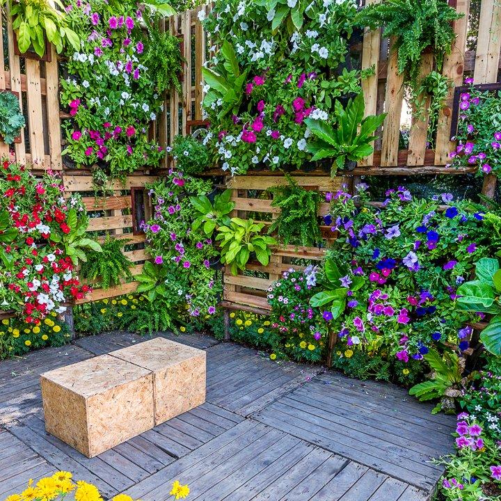 DIY Vertical and Horizontal Colourful Garden
